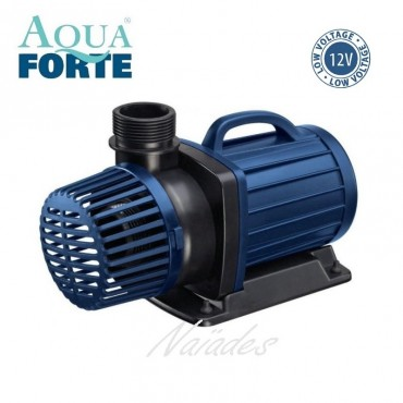 Pompe AquaForte type DM 12 V