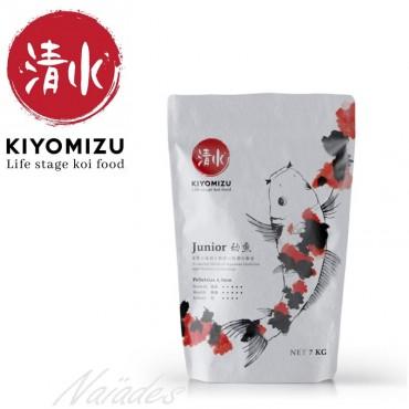 Kiyomizu Junior