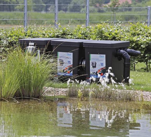 Les na ades for Bassin filtration